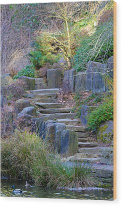 Enchanted Stairway Wood Print by Athena Mckinzie