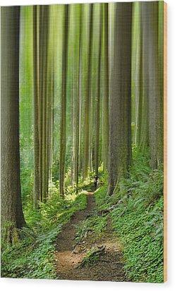 Enchantment Wood Print by Don Schwartz