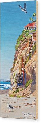 Encinitas Beach Cliffs Wood Print by Mary Helmreich