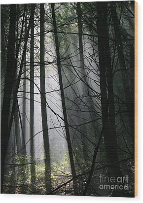 Encounters Of The Vermont Kind  Wood Print