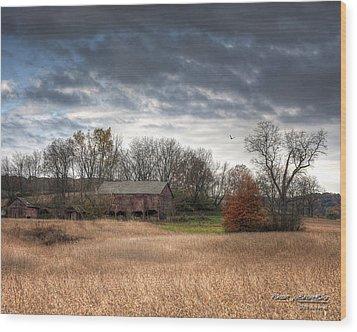 End Of Fall - Ohio IIi Wood Print