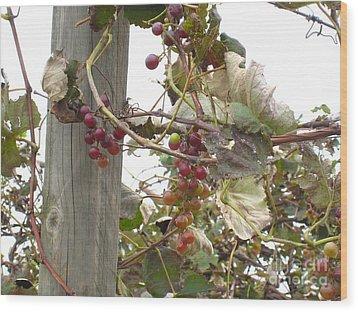 End Of Season Grapes Wood Print by Jennifer E Doll