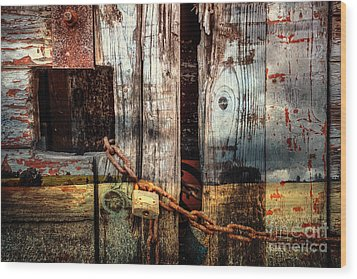 End Of Season Wood Print by Martin Dzurjanik