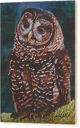 Endangered - Spotted Owl Wood Print by Mike Robles
