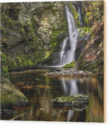 Enders Falls Wood Print by Bill Wakeley