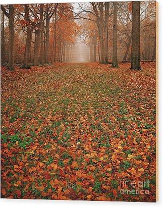 Endless Autumn Wood Print by Jacky Gerritsen