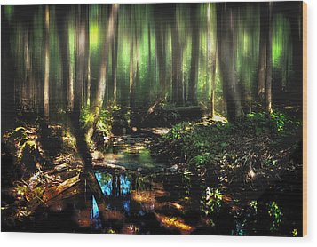 Endless Forest Wood Print by Gary Smith