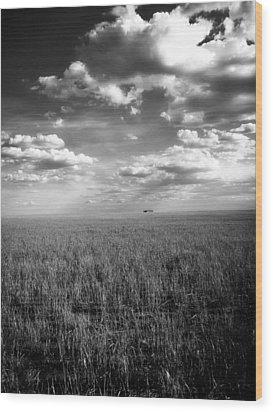 Endless Wood Print by Tom DiFrancesca