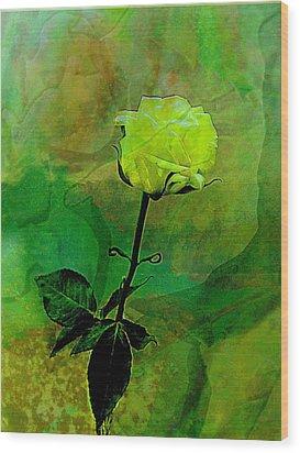 Enduring Yellow Rose Wood Print
