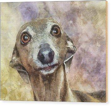 Wood Print featuring the painting English Hound Hunting Dog by Georgi Dimitrov