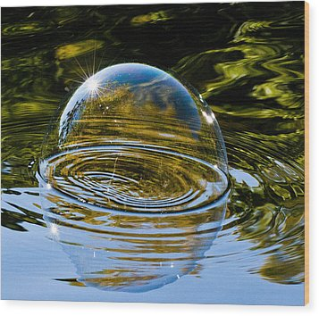 Enjoy This Moment Wood Print by Terry Cosgrave