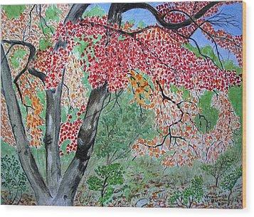 Enjoying Lost Maples Wood Print