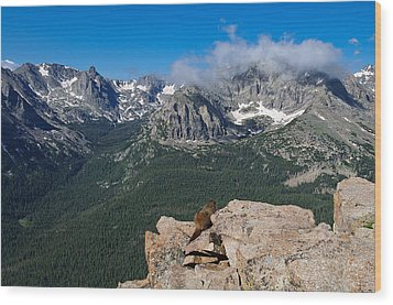 Wood Print featuring the photograph Enjoying The View by Tyson and Kathy Smith
