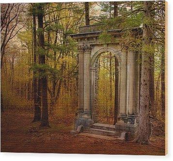 Enter Wood Print by Irene Suchocki