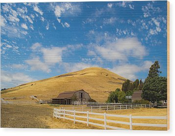 Entering The Napa Valley Wood Print by Rima Biswas