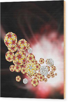 Enterovirus Particles Wood Print by Science Photo Library