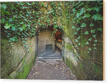 Entrance To A Winery Wood Print by Francesco Emanuele Carucci