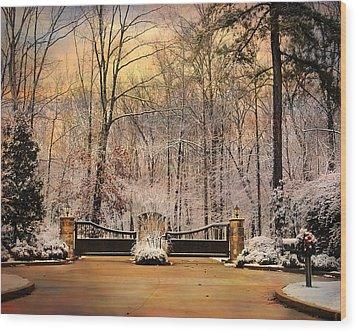 Entrance To Winter Wood Print by Jai Johnson
