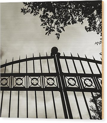 Wood Print featuring the photograph Entrances To Exits - Gates by Steven Milner