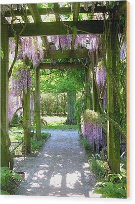 Entranceway To Fantasyland Wood Print