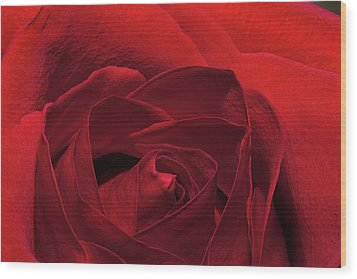 Enveloped In Red Wood Print by Phyllis Denton