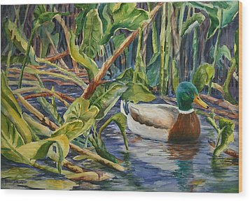 Environmentally Sound - Mallard Duck Wood Print