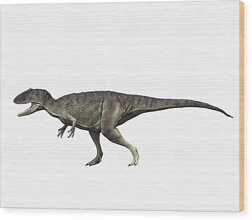 Eocarcharia Dinops, Early Cretaceous Wood Print by Nobumichi Tamura