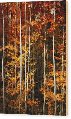 Wood Print featuring the photograph Equilibre by Philippe Sainte-Laudy