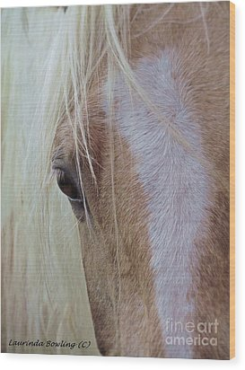 Equine Head Study Wood Print by Laurinda Bowling