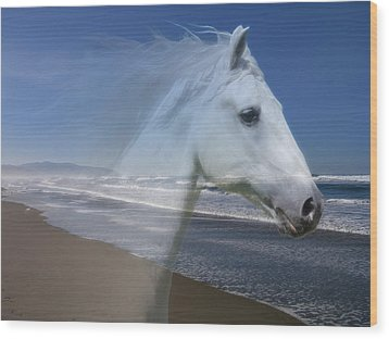 Equine Shores Wood Print