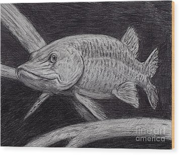 Esox Masquinongy Wood Print by Larry Green