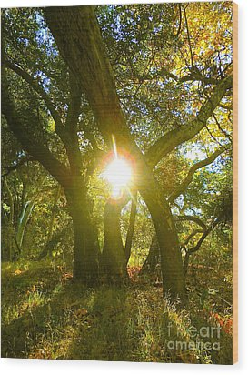 Essence Of Life Wood Print by Gem S Visionary