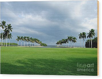 Estate Lawn Wood Print by Andres LaBrada
