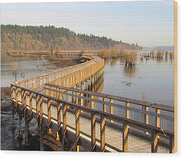 Wood Print featuring the photograph Estuary Boardwalk Trail by I'ina Van Lawick