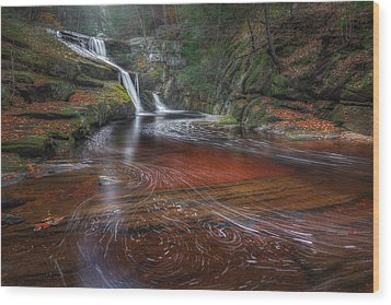 Wood Print featuring the photograph Ethereal Autumn by Bill Wakeley