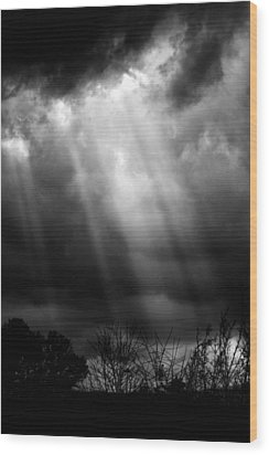Ethereal Wood Print by Daniel Amick