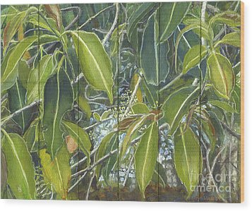 Euca - Leaves Section Wood Print