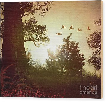 Evening Flying Geese Wood Print by Peter Awax