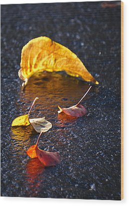 Evening Leaves On Wet Pavement Wood Print by Ronda Broatch