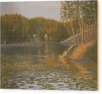 Evening Light On Avondale Wood Print by Paul K Hill