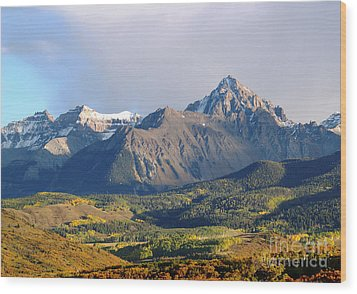 Evening Light On The Sneffels Range Wood Print by Alex Cassels