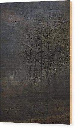 Evening Mist Wood Print by Ron Jones
