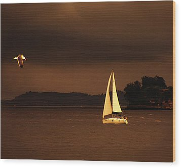 Wood Print featuring the photograph Evening Near Sausalito  by Chuck Caramella