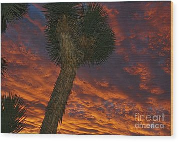 Evening Red Event Wood Print by Angela J Wright