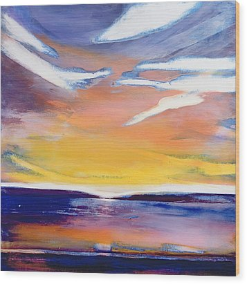 Evening Seascape Wood Print by Lou Gibbs