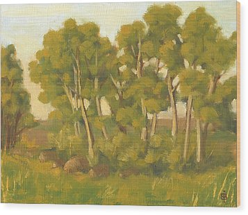 Evening Sets Wood Print by Bibi Snelderwaard Brion