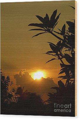 Evening Sun Wood Print by Marguerita Tan