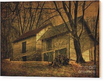 Evening Twilight Fades Away Wood Print by Lois Bryan
