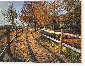 Evening Walk Wood Print by Debra and Dave Vanderlaan