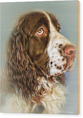Ever Watchful English Springer Spaniel Wood Print by Wallaroo Images